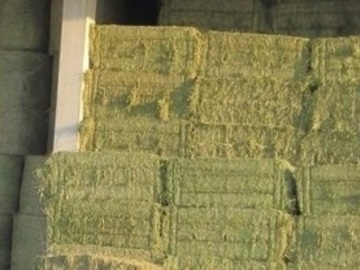 Selling: Vends foin de fléole, foin de prairie et d' Enrubannage Bio