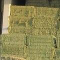 Vente : Vends foin de fléole, foin de prairie et d' Enrubannage Bio