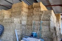 Vente : Paille de blé