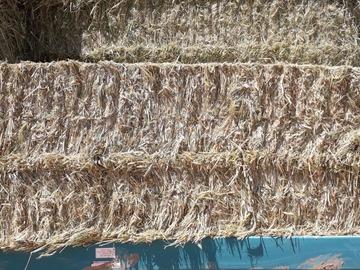 Vente : VENDS FOIN RAY GRAS TRITICAL