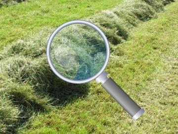 Richiesta: Recherche coupes d'herbes saison 2021 Dép: 76/27/60