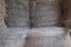 Vente : Foin de prairies naturelles bio Dép: 64